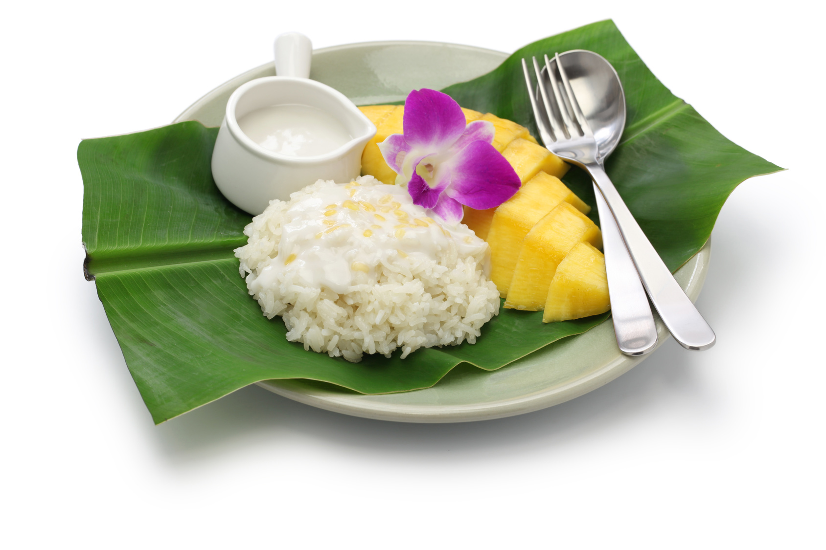 Slow Cooker Coconut Rice Pudding with Fresh Mango